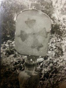 53. Τεμάχιο του κορμού του δένδρου όπου αποτυπώθηκε ο αχειροποίητος Τίμιος Σταυρός